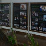 Un breve post desde Tanzania