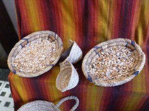 semillas secas y frescas de argán