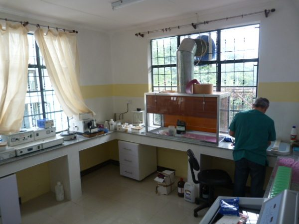 laboratorio ap rdtc