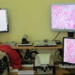 Diagnóstico online Tanzania-España