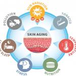 Exposoma: las 7 causas del envejecimiento de tu piel